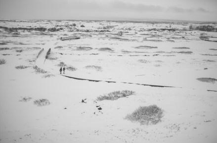 Thingvellir snow scene