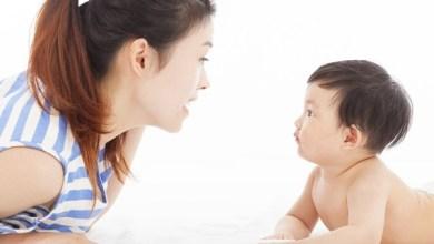 cara mengajari anak bicara