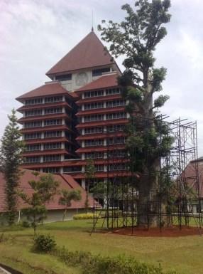 universitas indonesia