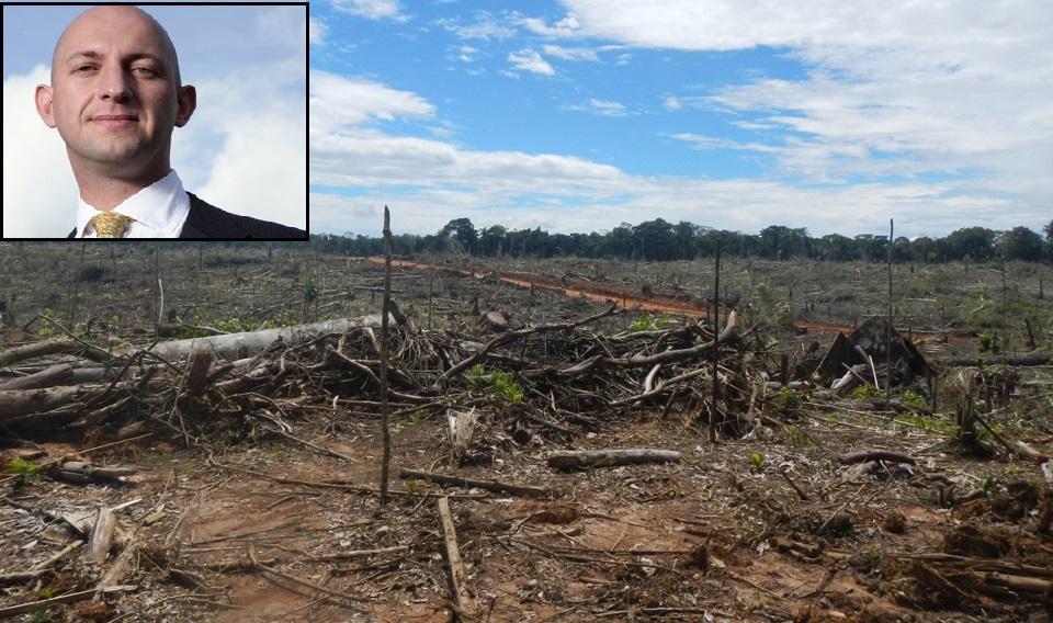 Izquierda superior: Dennis Melka, gerente adjunto de Pacific Plantations Ltd. Fondo: Terreno deforestado en Tamshiyacu, Loreto, por una de sus empresas. (Foto: EIA).