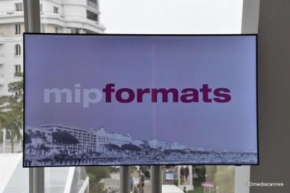 mipdoc & mipformats