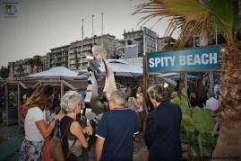 Spity Beach
