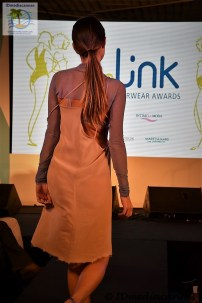 The Link Awards (17)