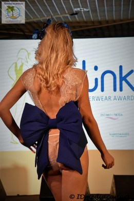 The Link Awards (23)