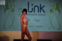 The Link Awards (65)