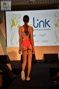 The Link Awards (71)