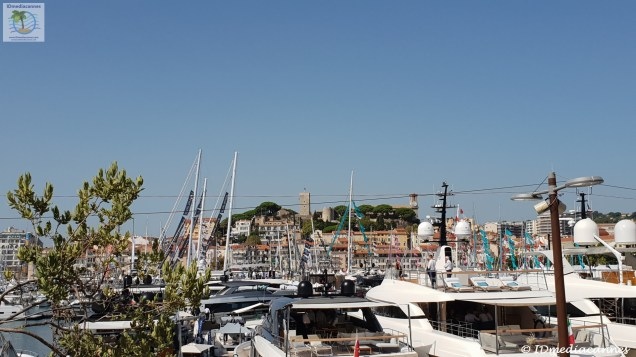 Cannes Yaching Festival