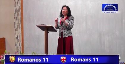 Romani 11