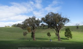 Strath Creek Region, Victoria - Australia_'Valley of a Thousand Hills'_Photographed by ©Karen Robinson_www.idoartkarenrobinson.com May 2017 Comments: Day photographing with my daughter and husband who kindly drove us location to location. This particular photograph was taken looking in the opposite direction to the view of 'The Valley of a Thousand Hills'. On side there was the Valley, and the other side - there was this! Just an amazing contrast. NB: All images are protected by Copyright Laws.