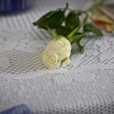 white lace tablecloth available to hire