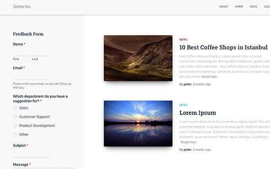 IDOLTV thêm biểu mẫu phản hồi của khách hàng trong wordpress