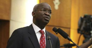 Fashola raises alarm over ministry's 2017 budget irregularities