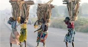 Niger State Indigenes