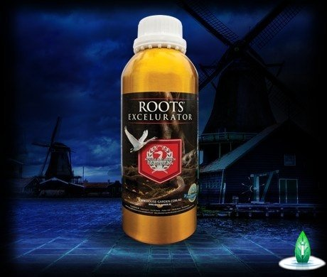 H&G - Root Excelurator 250ml