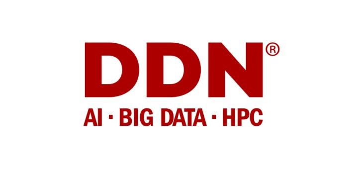 DDN ai big data hpc logo