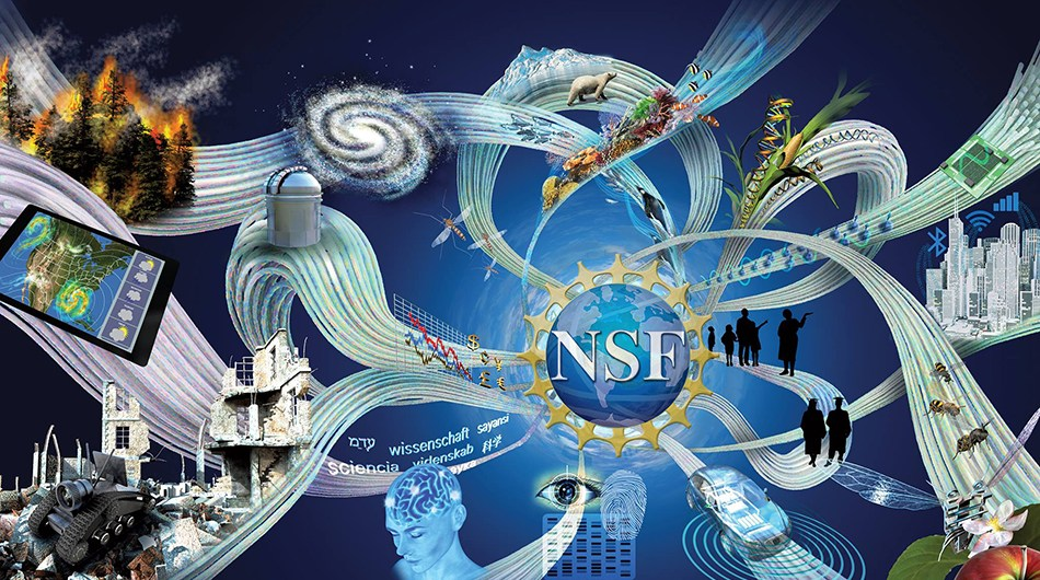 NSF Facebook header with logo added