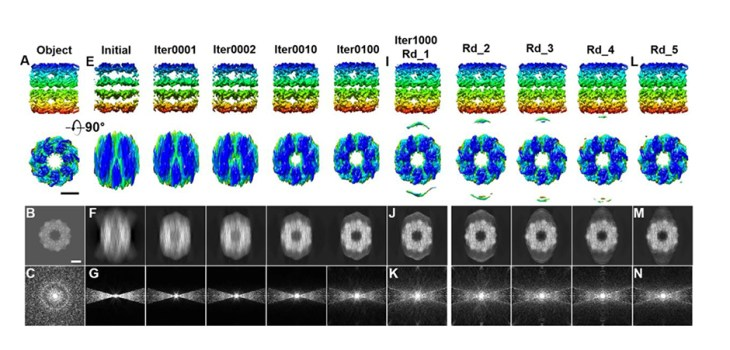 Gang Ren, LoTToR: An Algorithm for Missing-Wedge Correction of the Low-Tilt Tomographic 3D Reconstruction of a Single-Molecule Structure, Figure 3 From: LoTToR: An Algorithm for Missing-Wedge Correction of the Low-Tilt Tomographic 3D Reconstruction of a Single-Molecule Structure