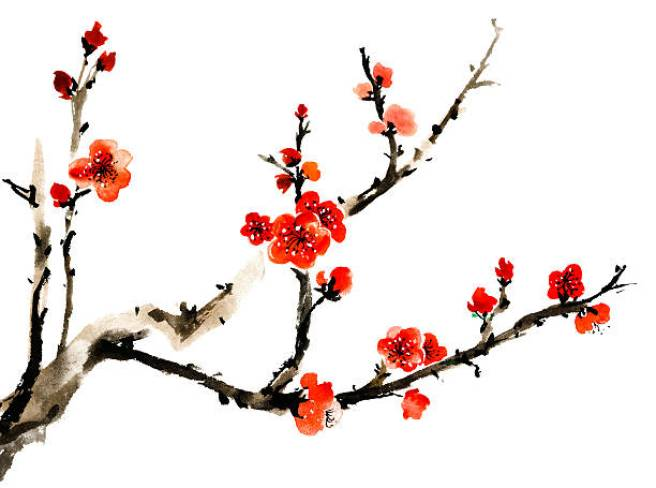 ume-blossom-clipart-japanese-culture-1