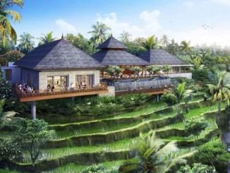 Pesona Tanah Ubud Bali