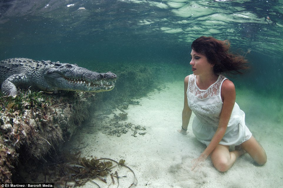 Face-To-Face-Photo-Shoot-With-Crocodile-6