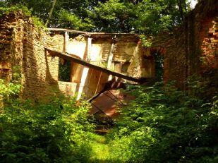 Nagorzany, ruina cerkwi (zawalony dach z kopułą) (2011r.)
