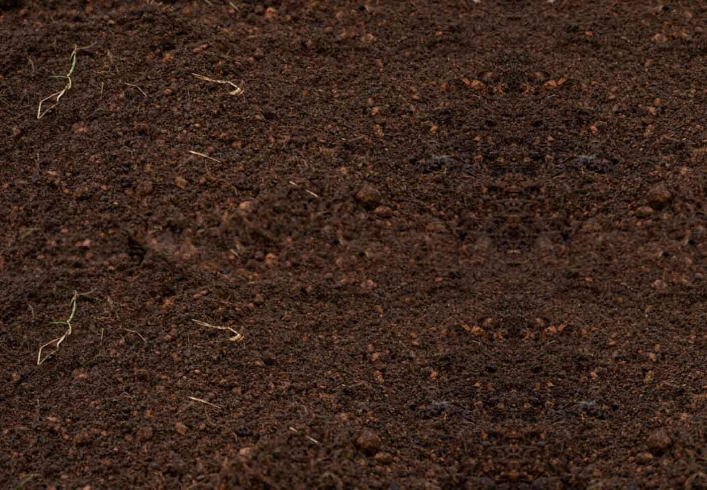 Soil Health Evaluation