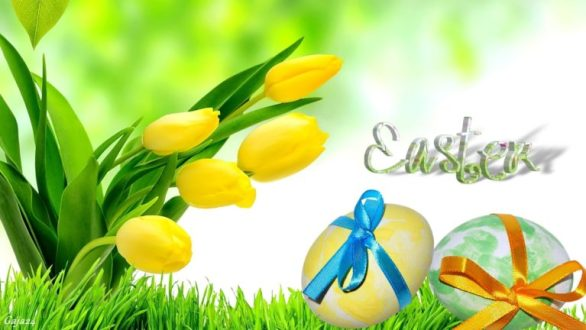 Happy Easter HD Photos