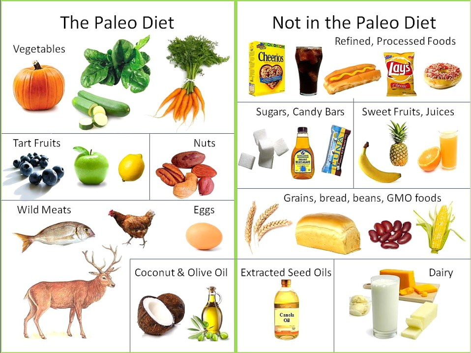 how to lose weight with paleo