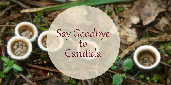 How to get rid of candida effectively