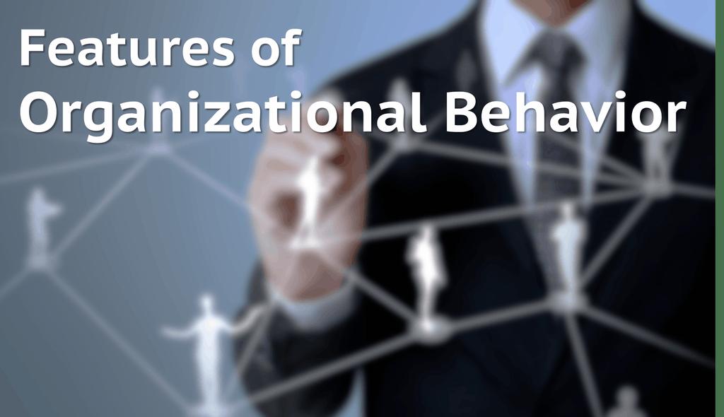 6 Features of Organizational Behavior