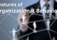 6 Features of Organizational Behavior (Characteristics or Nature of OB]