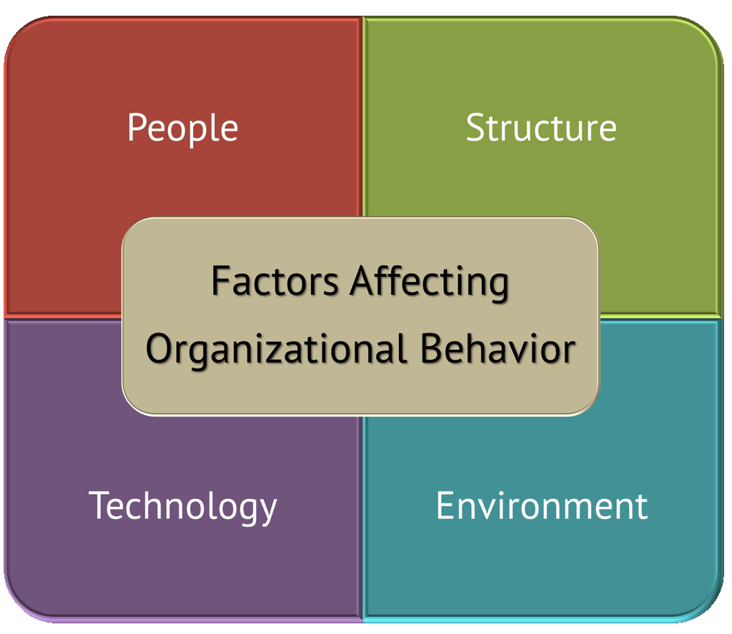 4 Key Forces Affecting Organizational Behavior (Explained)
