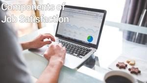 Components of Job Satisfaction