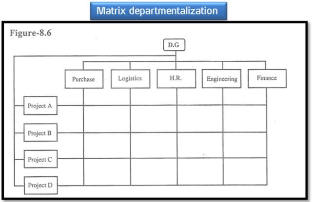 departmentalization definition