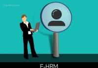 E-HRM: Definition, Advantages, Practices
