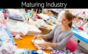 Maturing Industry