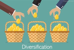 Definition of Diversification