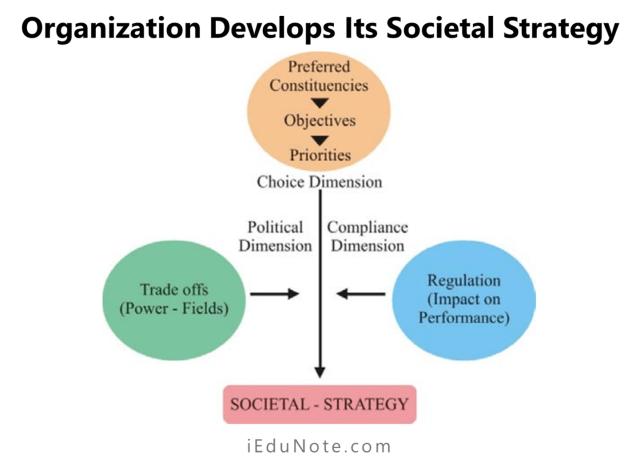 organization develops its societal strategy