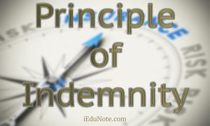 Principle of Indemnity: Definition and How it Works in Insurance