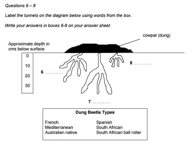 IELTS reading diagram completion