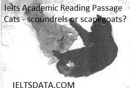 Ielts Academic Reading Passage Cats - scoundrels or scapegoats?