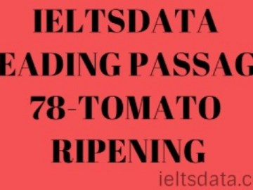IELTSDATA READING PASSAGE 78-TOMATO RIPENING