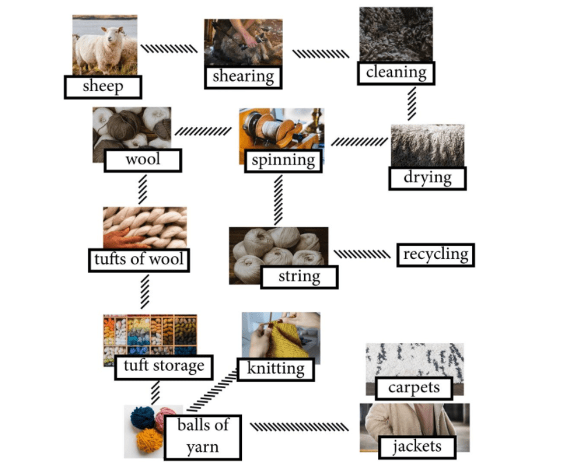 The Diagram Details the Process of Making Wool