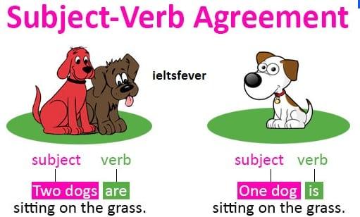 WRONG USAGE OF SUBJECT–VERB AGREEMENT ENGLISH GRAMMAR