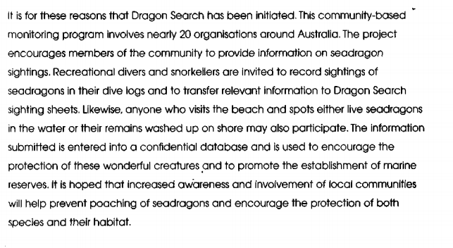 Seagragon search 4