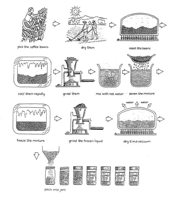 process essay how to make tea How to make an indian tea indian tea is very healthy, especially during the winter as it contains natural neutralizers such as ginger, cardamom, etc indian tea is very, very different from the various kinds of tea that are taken in other.