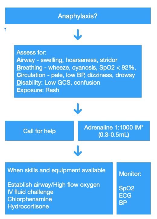Anaphylaxis algorithm