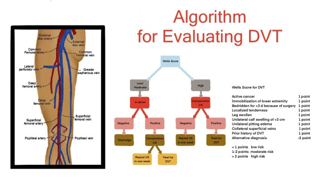 DVT evaluation algorithm