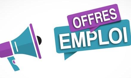 Fam Group recrute un Stagiaire Assistant marketing