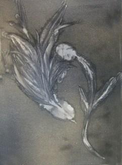 Bird, monoprint